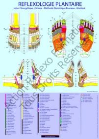 cartographie du pied
